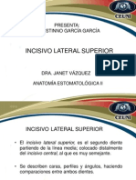 Incisivo Lateral Superior