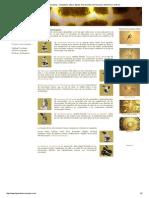 f5d298fb41 Tipos de Microscopios _ Compuesto, Optico, Digital, Fluorescente,  Microscopio, Electronico,