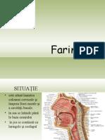 Prezentare Faringele_0