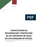 Capacitacion en Recuperacion y Proteccion de Las Vertientes de Agua, Informe