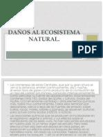 Daños al ecosistema natural