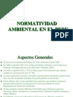 NormatividadPeruana2006-2