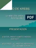 Ciclo de Kreebs