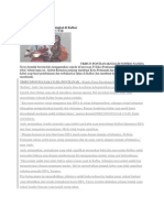 Kasus ISPA Dan Diare Meningkat Di Kalbar