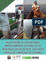 Tallas mínimas de captura de las principales especies de peces, crustáceos y moluscos comerciales de Colombia-2013