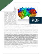 Enzima.pdf 20