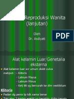 42061770 Sistem Reproduksi Pria