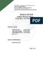 lahan pasang surut.pdf