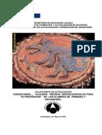 prevencion_riesgos_biopsicosociales.pdf