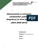 Dimensiunile și structura cheltuielilor publice (bugetare) la nivel de stat pe o anumită țară (SUA 2005-2010)