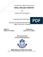 BBA Guide Line for Project Report BBA III Year