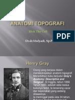 Anatomi topografi