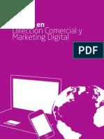 Master en Dirección Comercial y Marketing Digital