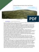 Le grotte nella Riserva Naturale Regionale Orientata «Bosco delle Pianelle»