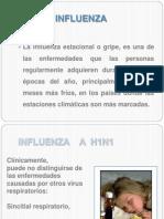 17-05-2012-Influenza a h1n1 Reunion Regiones-dra Cecilia 2013