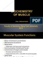Biochemistry of Muscle