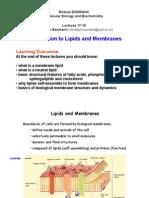 L17-L18-lipids-2013-14
