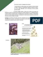 Aspectos Social, Politica y Economica de Los Incas