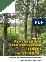 Agroforestry_Karet_Klon