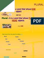 Singular Plural