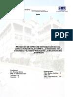 Promocion de Emprsas de Produccion Social Como Activador Del Desarrollo Endogeno