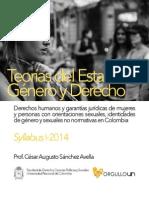 Optativa disciplinar Teorías del Estado Género y Derecho