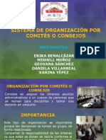 ORGANIZACIÓN POR COMITES O CONSEJOS