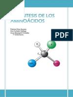 Síntesis de aminoácidos. COPY