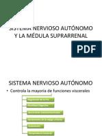 FISIO- SISTEMA NERVIOSO AUTÓNOMO Y LA MÉDULA SUPRARRENAL