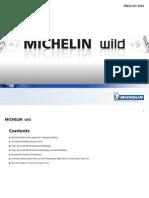 9699-MICHCORP-NEWS2010
