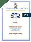 auditoria forense 24-02-2014