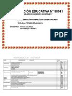 PCD-3° GRADO-2014.docx-esquema