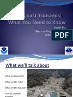 Gulf Tsunamis LCH (1)