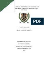 DISEÑO DE REACTORES DE PREPOLIMERIZACIÓN Y POLIMERIZACIÓN PARA LA PRODUCCIÓN DE ÁCIDO POLILACTICO EN UNA PLANTA INDUSTRIAL