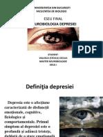 Neurobiologia depresiei