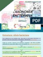 2.-TAXONOMÍA BACTERIANA