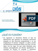 flexion-101129201904-phpapp01