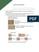 Características_físico-químicas_del_plasma_sanguíneo