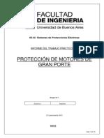 Proteccion de Motores de MT