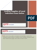 Leading Supplier of Level Indicators Goes Online