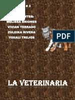 taller  3 la veterinaria