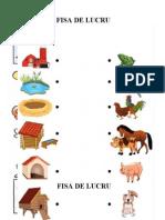 fise_animale