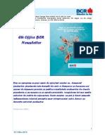 EU Office BCR Newsletter Nr 11 2008 RO