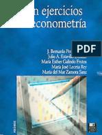 100-ejercicios-de-econometria.pdf