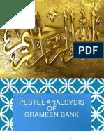 Pestel Grameen Bank