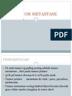 Tumor Metastase