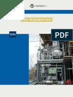 Pb 42 File Meg Regeneration