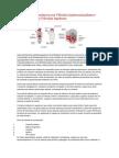 Análises e diagnósticos nas Válvulas Injetoras