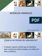 Modelos Animales Clase 2