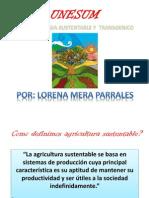 Deber 2 Agroecologia
